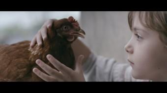 Int 2 - The Chicken - film still 2045x1150
