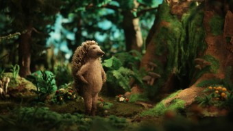 Hedgehogs Home